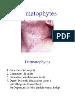 Dermatophytes 2018
