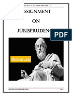 azeem mian jurisprudence BIBLIO left.docx