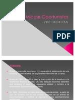 Micosis_Oportunistas_criptococosis