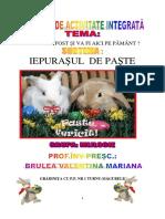135091086-Insp-gr-1-Iepuras