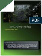 Vizkievicz Andras Zarvatermok Torzse