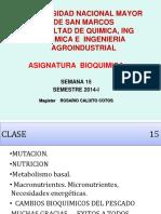 clase 15--BIO-2014-ADN.pptx