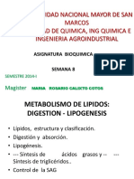 CLASE-8-LIPOGENESIS-2014.pdf