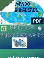 sector cuaternario