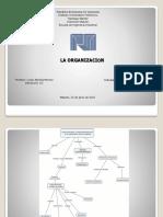 IUPSM Grace Delgado (Asig. Electiva III) CI 17722760 Organización Mapa Conceptual.pptx