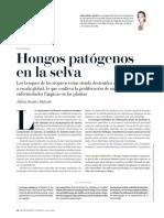 Hongos patógenos en la selva.pdf