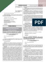 Res.Adm.077-2019-CE-PJ