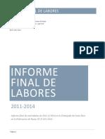 Informe Final de Labores Rusia Mario Fernandez Silva (2)