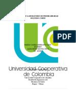 LAB 2. SUELOS PERMEABILIDAD (2).docx