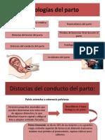 Obstetricia.aborto