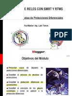 Seminario proteccion diferencial San Salvador.pdf