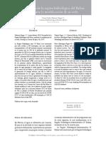 v6n1a5.pdf
