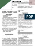 D.S.096-2005-RE