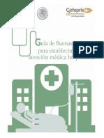Buenas_Pr_cticas__Atenci_n_Hospitalaria-_29-03-2017__1_.pdf