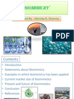Biomimicry Ppt Nsd