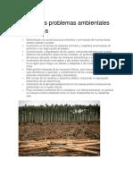 Principales Problemas Ambientales de América