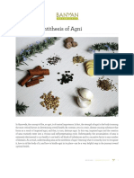 AmaAntithesisAgni Interactive