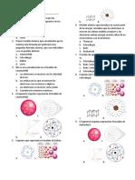 Taller Modelos Particulas y Conf Electronica