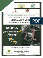 20190425_MOISA