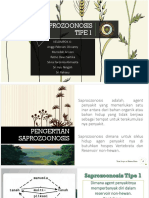 Saprozoonosis Tipe 1 Group 4