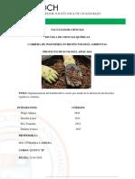 Informe 1 Eco Aplicada (1) (3)