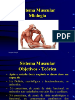 Sistema Muscular-Geral.pptx