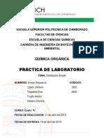 Informe Orgánica.docx