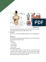 Anatomi Histo Fiaal Usus Rektum Rahmat
