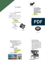 Estudio parcial 2 Siglo XX