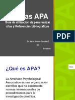 NORMAS APA 2019 DR MAGE.pdf