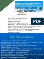 1 SO Maestria Seg y Med Ambiente (en PDF).pdf