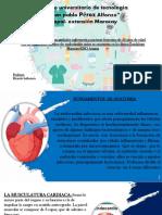 221512132 Trabajo Completo de Antihemorragicos y Antigoagulantes Farmacologia