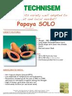Solo Papaya