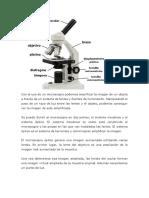 Con El Uso de Un Microscopio Podemos Amplificar La Imagen de Un Objeto a Través de Un Sistema de Lentes y Fuentes de Iluminación