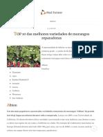 TOP 10 Das Melhores Variedades de Morangos Reparadoras _ Louco Agricultor
