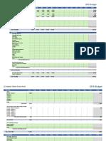 Company Business-Budget 12months Coachzul.com