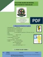 Business Opportunities in Mizoram