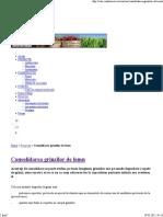 Consolidarea-Grinzilor-de-Lemn.pdf