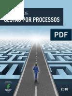 e-book manual de gestão por processos