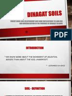 PDI Soils