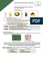 Manual de Correccion de Evaluación Diagnóstica CTA 1