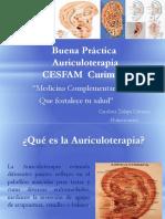 1_ssa_img_cursos_Buena Practica MAC Curimon 31-05-17.pdf