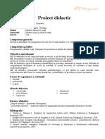 proiect_didactic_violenta.doc