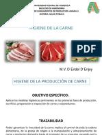 Clase_Higiene_de_la_carne_II.pdf