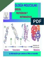 T22-replica+transcrip.pdf