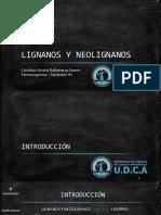 Seminario Lignanos&Neolignanos GrupoH