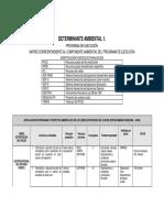 Anexo Programa de Ejecucion Componente Ambiental Con Ajustes