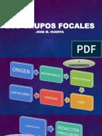 Los Grupos Focales - Huerta