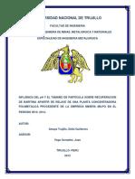 universidadnacionaldetrujillo-131002190411-phpapp01