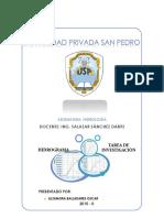 HIDROGRAMAS - TRABAJO DE INVESTIGACION.docx
